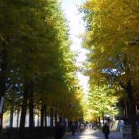 奈良へ行った気分に