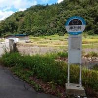 バス停はそのものズバリ神社前
