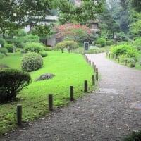 母性社会日本の意味(1)