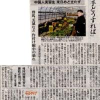 日本中の野菜の価格が4月から高騰する怖れがある理由。         政府自民党も上級官僚も知らぬ顔だが国民は大きな影響を受ける。