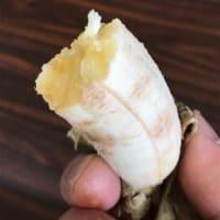 島バナナの冷蔵テスト /保存食品/冷蔵バナナ/モニター募集