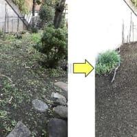 先日草むしり作業した個人邸年内に敷地内きれいにして欲しいとのご依頼