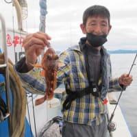6/19(土)マイカ釣り後半失速も一升瓶サイズ混じり何とか根魚はアコウにウッカリに鬼にアマダイと(*^^*)ノ