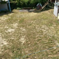 草刈り2回目