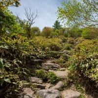 湯ノ丸山を登る