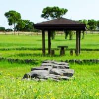 きじひき公園