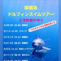 御蔵島ドルフィンスイムツアー  4〜6月 ご予約受付中