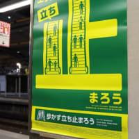 金沢八景 nakatoの「麻布十番シリーズ」 ラム肉の濃厚チーズクリームソース  ゴルゴンゾーラ仕立て