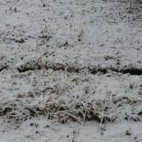 今年初めての雪景色 ワクワク感がよみがえる