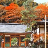 秋の京都 奥嵯峨を歩いてみませんか? 愛宕念仏寺