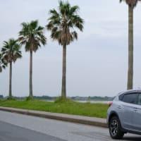 【千葉フォルニア】SUBARU XVで千葉フォルニアに行ってきた Went to Chiba-fornia with Subaru SV. 【X-T4】