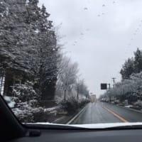 清里高原 うっすら雪化粧   韮崎 須玉 雪化粧