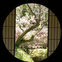 京都 雲龍院 悟りの窓