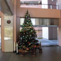 クリスマスツリー飾る
