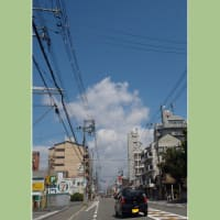 大阪府守口市八島交差点を北上