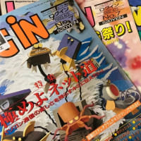 駿河屋 通販サイトの『アダルトゲーム雑誌 福袋』に入っていた『ログイン』3冊