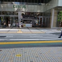 静岡鉄道「ちびまる子ラッピング電車」 通勤急行 (さくらももこさん旅立ちから1年)