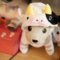 実はaiboは牛型ロボットだったのです。干支の牛になったモーボさん。