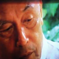 [第2弾] あの御巣鷹の峰の灼熱の夏から29年目の今日。川上慶子ちゃんを自衛隊機に乗せた男に、騙された