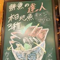 葉桜に変わってきた小田原城址公園|海鮮丼屋 小田原 海舟 本店