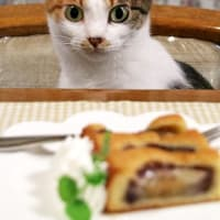 イチジクのケーキにゃの。