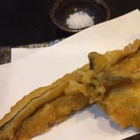 アナゴ天と手作り餃子