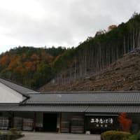 大原三千院(Ohara Sanzenin Temple in  Kyoto)