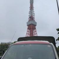 東京タワーを見上げて
