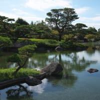 コスモスが咲きそろった「昭和記念公園」にて