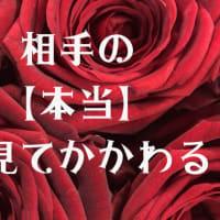 名古屋波動ワークショップ テーマ「「相手の ≪本当≫を見てかかわる」