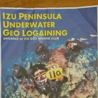 水中ロゲイニング大会に出場しませんか?