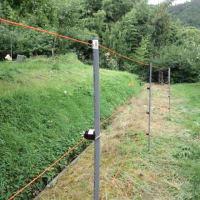 鹿はシナノスイート大好き 電気柵設置