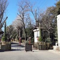 らき☆すた 神社へ初詣