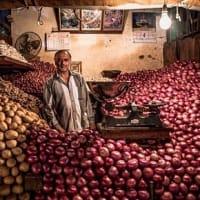 食糧供給  人口増大、温暖化の影響に世界はどう対応するのか?