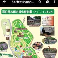 第2回ハープサークルfriend開催のお知らせ📢!