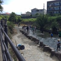 大阪大学環境サークルGECS主催 箕面川清掃イベントが開催されます!