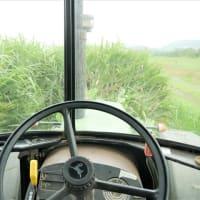 国道125号バイパスの除草作業。