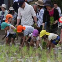 20周年 御田植祭 田染荘(豊後高田市・大分県)世界農業遺産