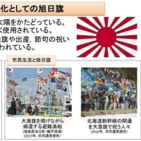 政府が旭日旗の説明→韓国紙が反論・外務省と防衛省のHPに韓国による言い掛かりの経緯も記載すべき