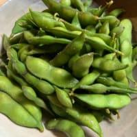 水戸伝統枝豆「黄門ちゃ豆」を食べた