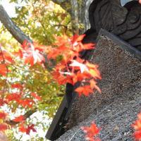 小林一茶193回忌全国俳句大会 11月19日開催