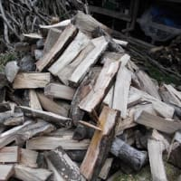 薪割りの季節