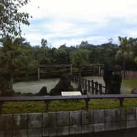 2010emiぷる台湾旅行記 vol.1