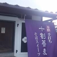 桜の名所 三春町 癌に効く温泉