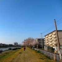 室住団地 No.3  (早良区)