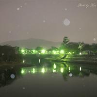 (続)雪の岡山後楽園:OHKニュースに登場^^;
