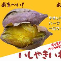 美味しくて甘~い安納芋🍠を使用した「いしやきいも」を販売開始!