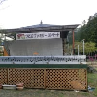 '19.04.16 桜吹雪・西田さんと練習する