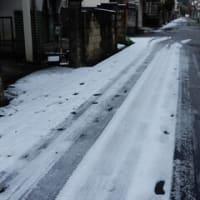 3度目の積雪・・・