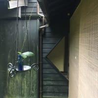 リフォーム 金沢 「湯宿さか本」